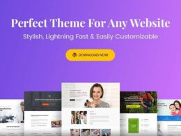 Astra Theme – Everything You Need to Build a Stunning Website v3.7.3 Nulled