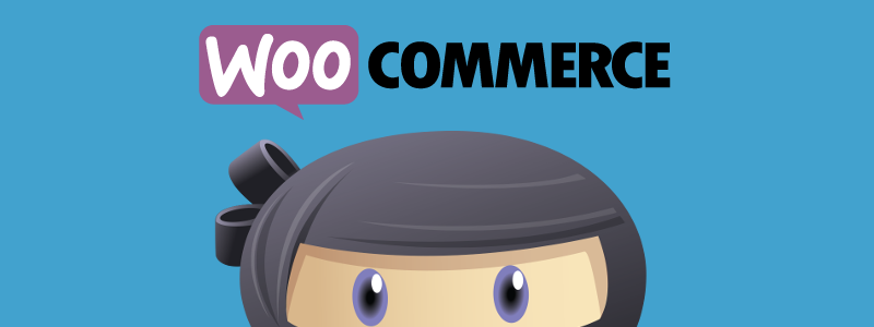 WP Adverts Accept Payments Using WooCommerce Plugin